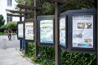 Display of international newspapers on the UC Berkeley campus, all of which are dated March 15 or 16, just before the city went into lockdown.